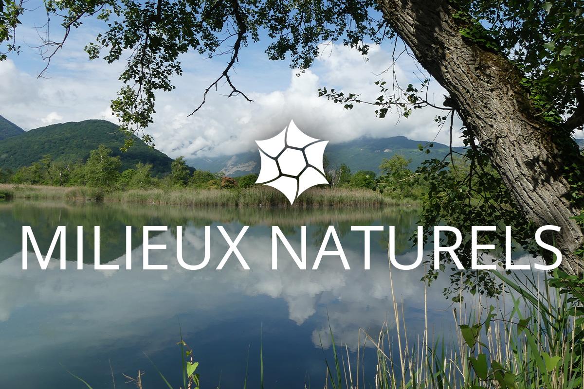 Galerie photo Milieux Naturels Isles du Drac RNR