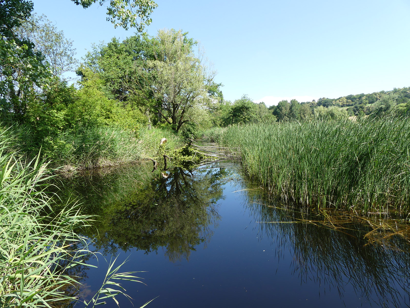 Milieu naturel Haute-Jarrie