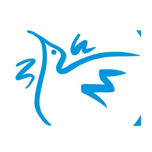 Logo RNR Blanc